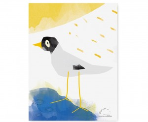 Plakat White  Bird